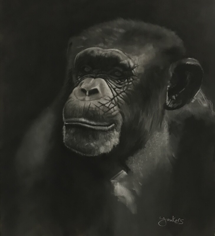Chimp - Giclee Fine Art Print