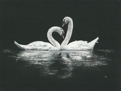 'Swan Song'