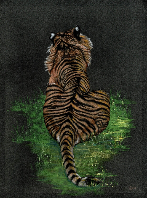 'Tiger Back on Black'