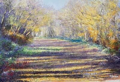'Abbotts Wood'