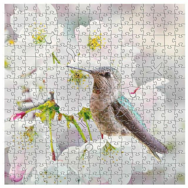 Anna's Hummingbird Puzzle