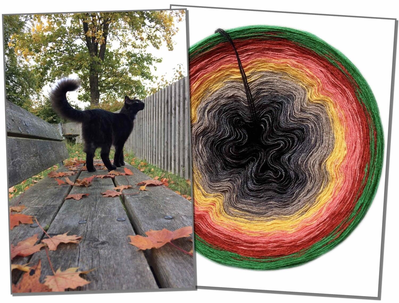 Woolpedia® Photo Colors gradient yarncake (modal)