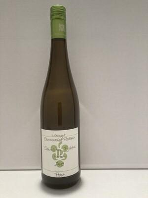 Sauvignon Blanc-2019 droog  Rebholz