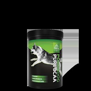 Pokusa Powerdog Pure BCAA