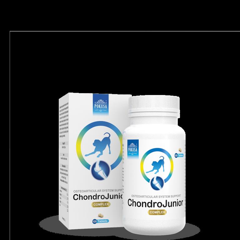 Pokusa ChondroJunior 120 tabletten
