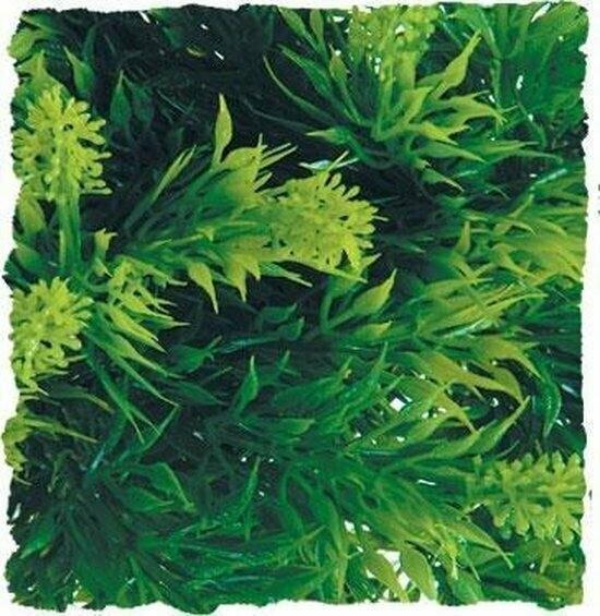 ZooMed - Naturalistic Flora - Malaysian Fern