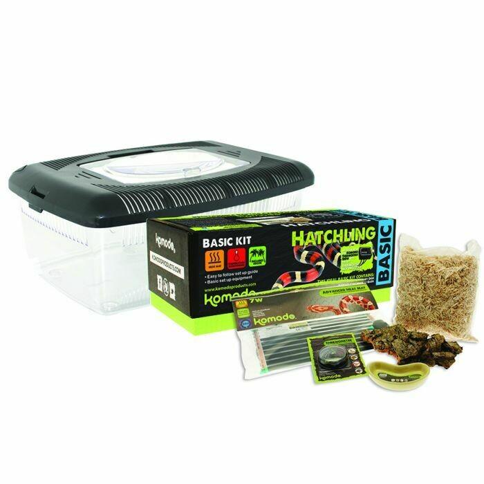 Komodo - Basic Hatchling Kit
