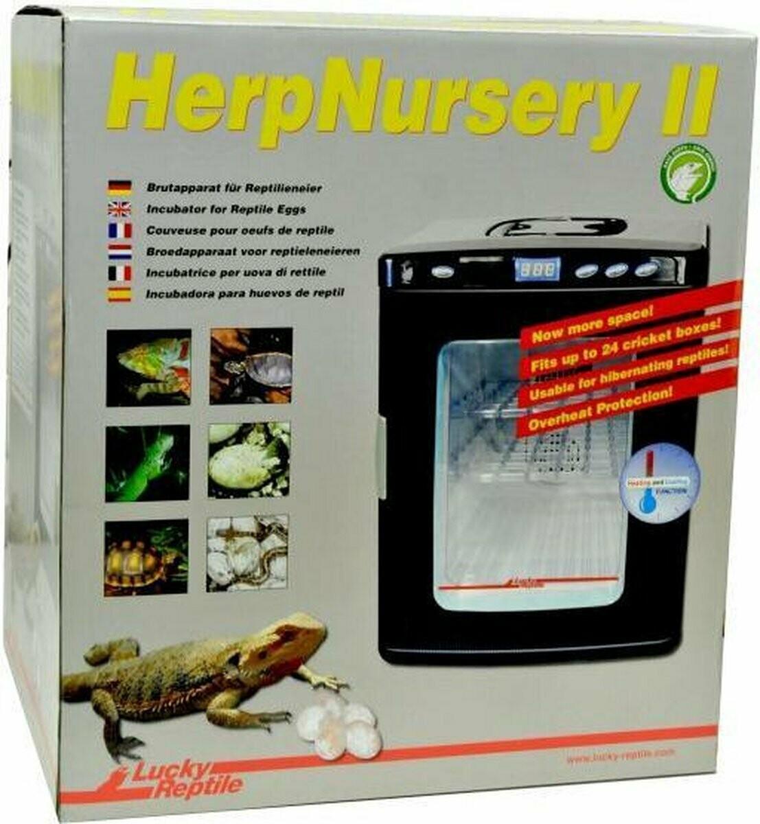Lucky Reptile - HerpNursery II