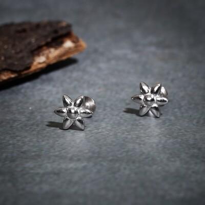 IndusDiva Nakshatra Design Studs Earring