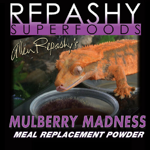 Repashy Mulberry Madness Gecko Diet 3 oz