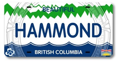 HAMMOND BC LICENSE PLATE