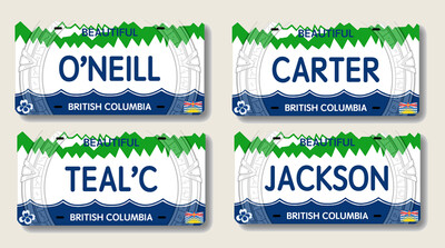 STARGATE LICENSE PLATE SET (4)