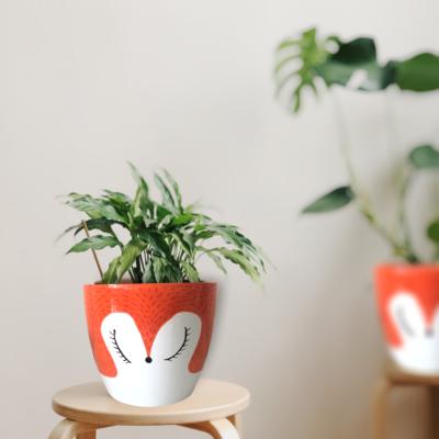 Teglica za biljke