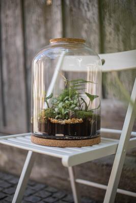 Samoodrživi biljni terarij