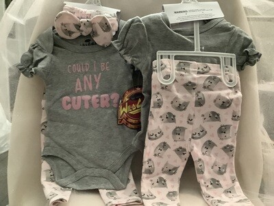 Baby Clothing Set - Could I Be Any Cuter 3/6M