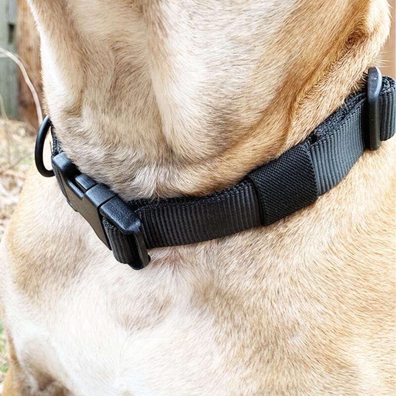 Tubular Dog Collar™