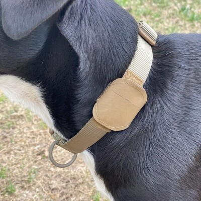 Dog Collar with Tracking Pouch™