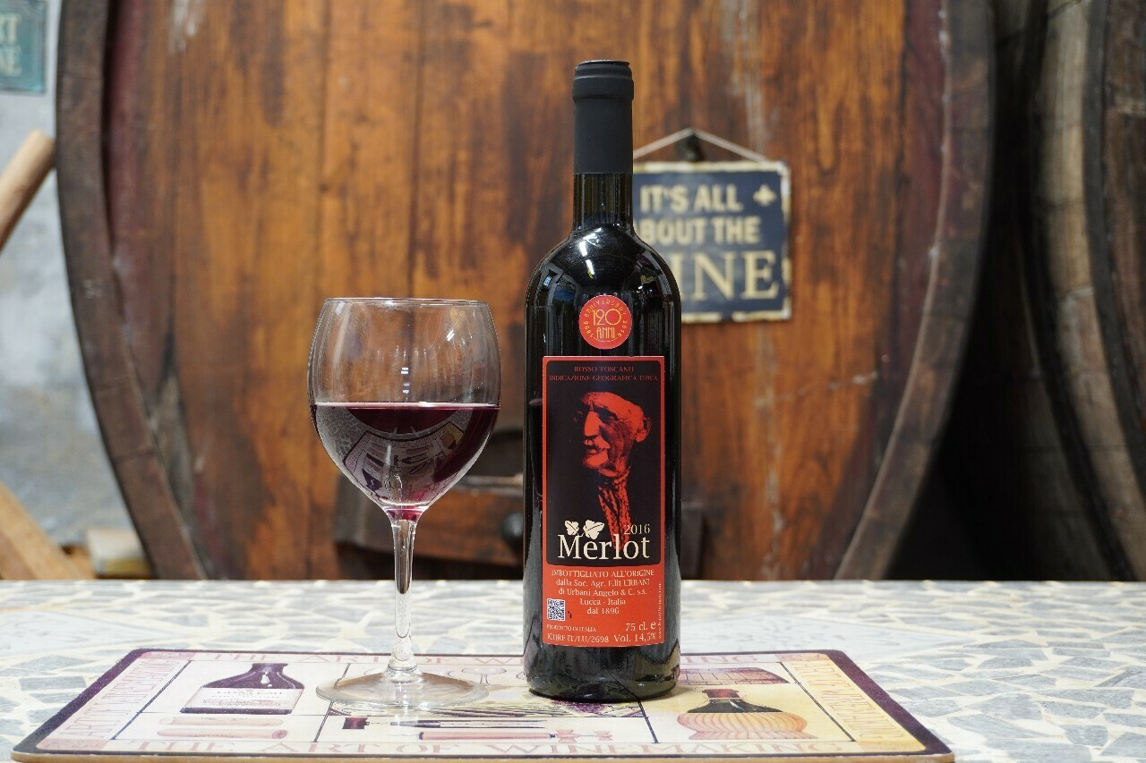 Merlot 2016 – Vino Rosso IGT