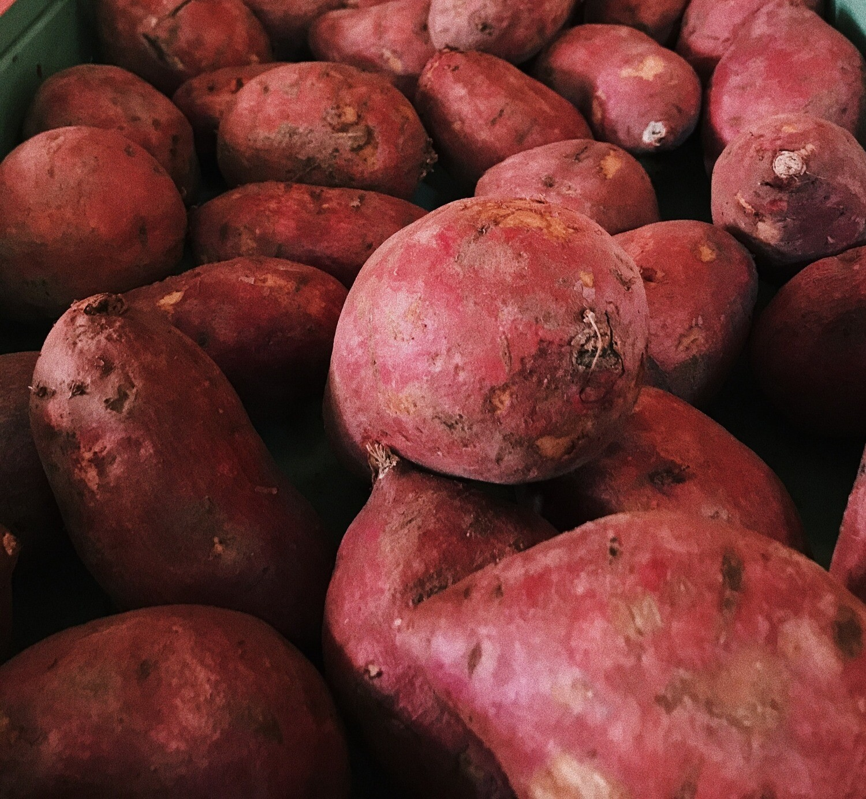 SC Sweet Potatoes