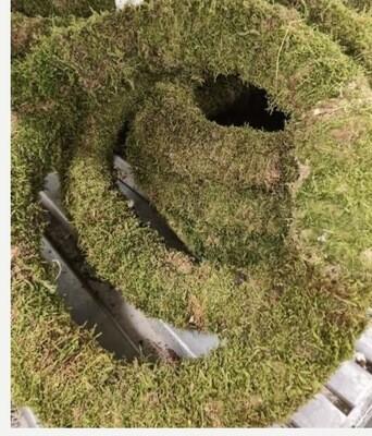 Moss Wreath (40cm)