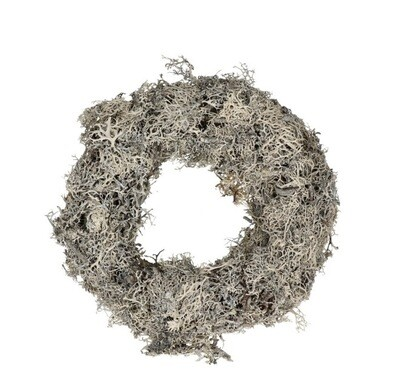 Dried Moss Wreath in white