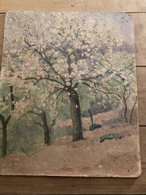 Blossom Trees Old Oil on board