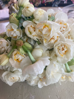 The Spring Kit Bowl of Narcissus Bridal Crown