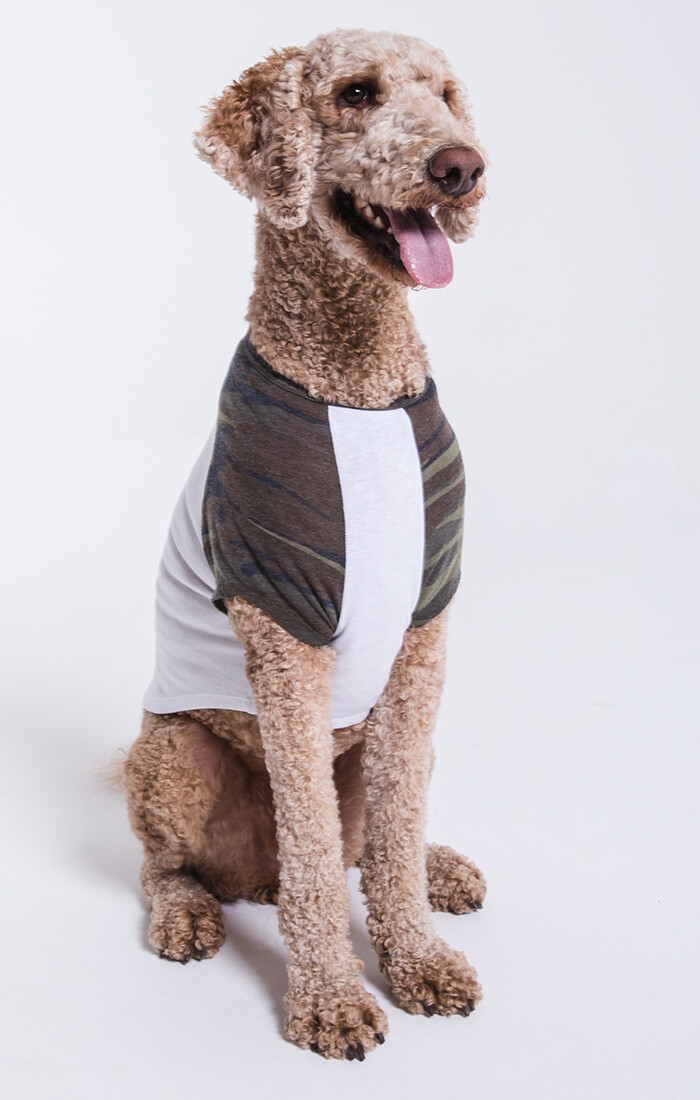 Camo Baseball Pup