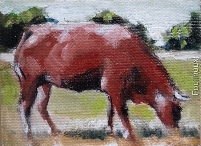 vache 16 / cow 16