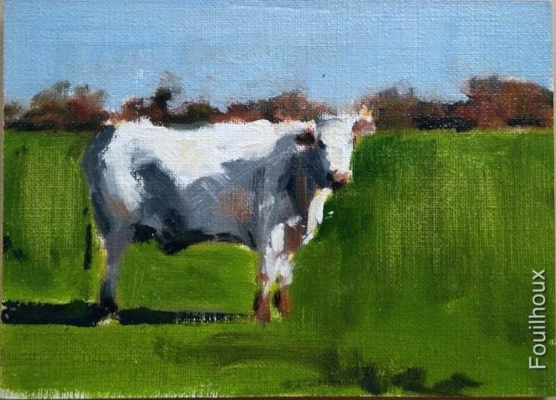 vache 17 / cow 17