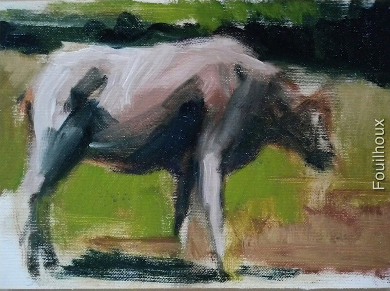 vache 15 / cow 15