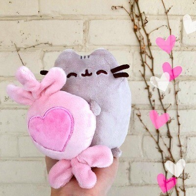 Pusheen with Heart Candy