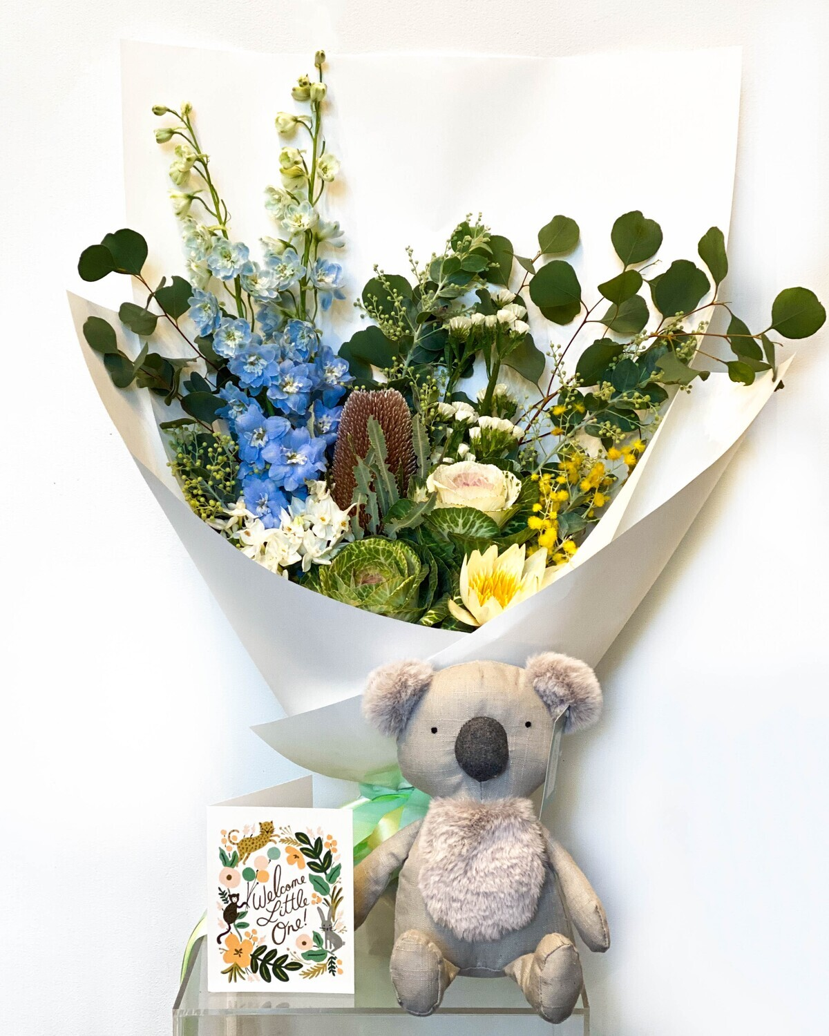 The Best of Fox and Rabbit – Baby Boy!