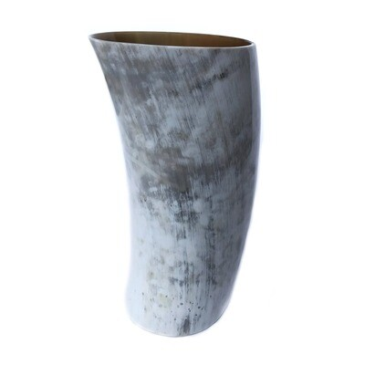 XLarge Cow Horn Vase