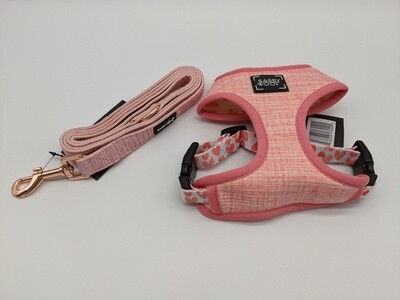 Dolce Rose Harness and Leash combo