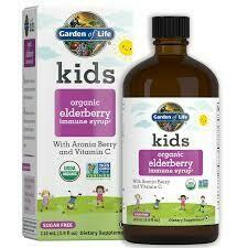 Garden of Life kids Plant Omega-3 Strawberry