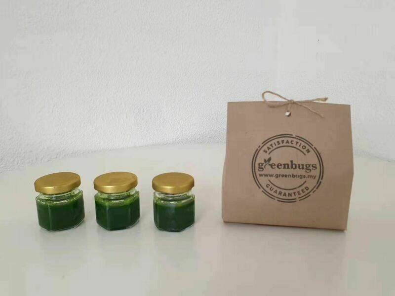 Frozen Concentrated Wheatgrass Shots