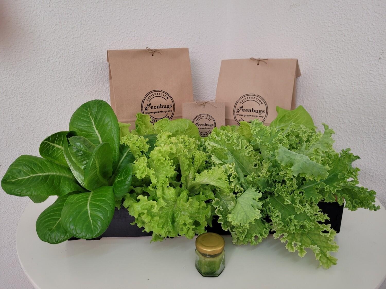 Bundle Mixes + Free Kale Shots