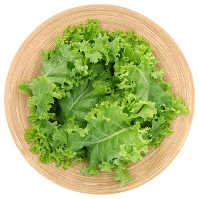 Netherlands Breed Curly Kale