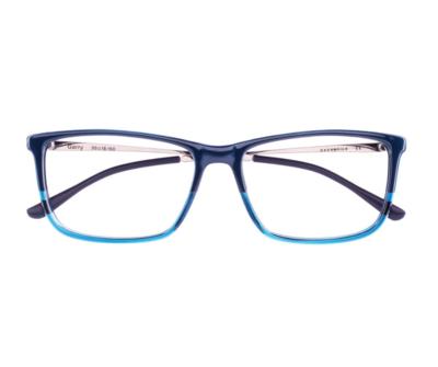 Okulary Garry Blue 3883 oprawka oraz najwyższej jakości soczewki STANDARD PLUS