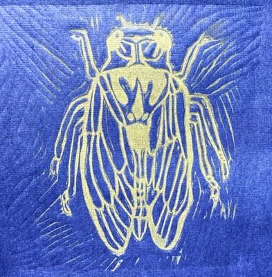 'Cicada of Change'