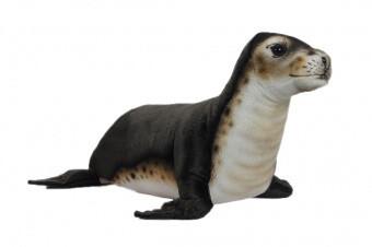 Тюлень-монах (65см)