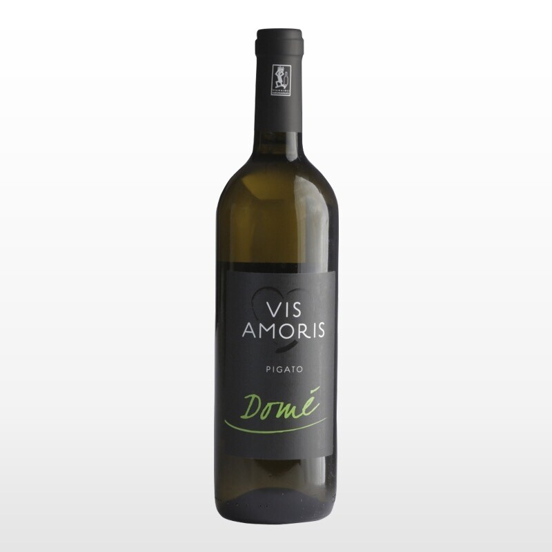 Pigato Domè Vis Amoris