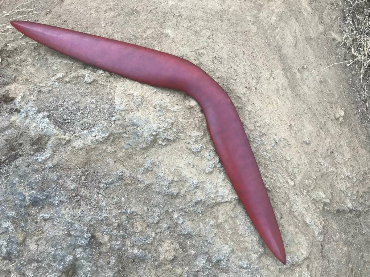 The Kimberley Stinger