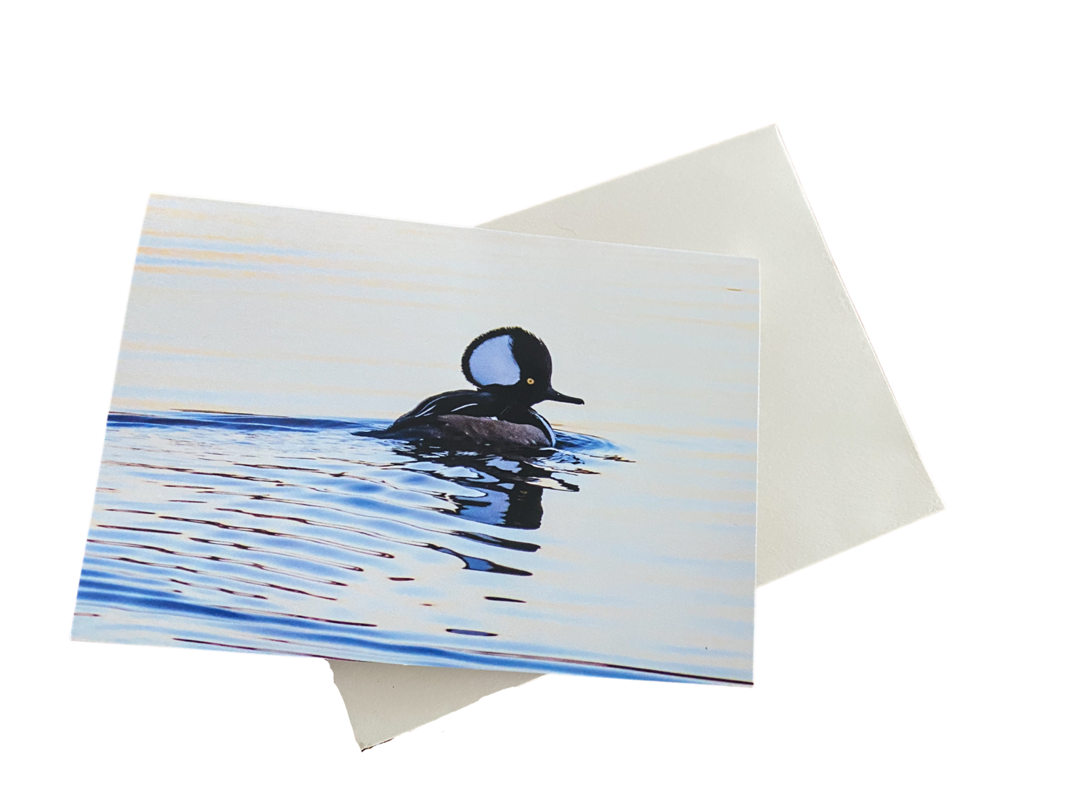 10 Hooded Merganser Notecards with Envelopes Included, 3.5 x 5 Inches