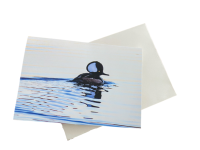 10 Hooded Merganser Notecards with Envelopes Included, 3.5 x 5 Inches​