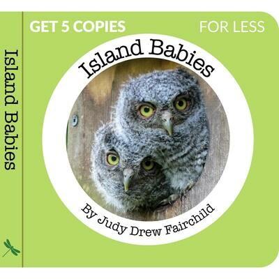 Island Babies by Judy Drew Fairchild - 5 book Bundle