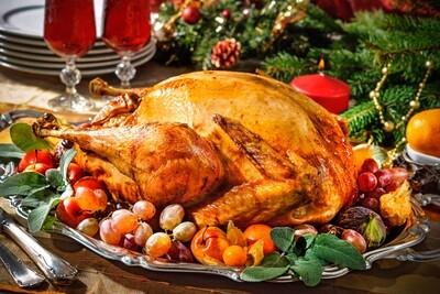 20+lb Free range Bronze turkey