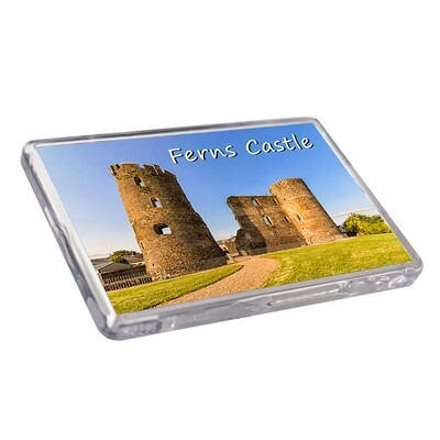 Fridge Magnet - Ferns Castle