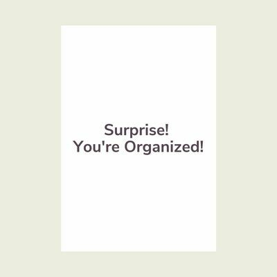Surprise! You're Organized! (1 Day)
